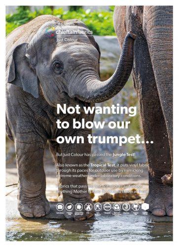 Elephant Mailshot